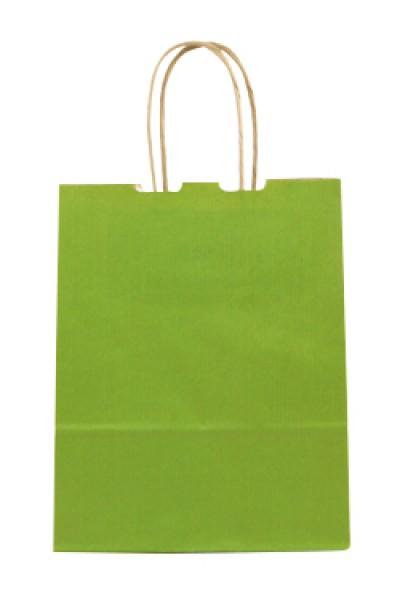 Elegante Papiertragetasche 17 + 7 x 21 cm, grün